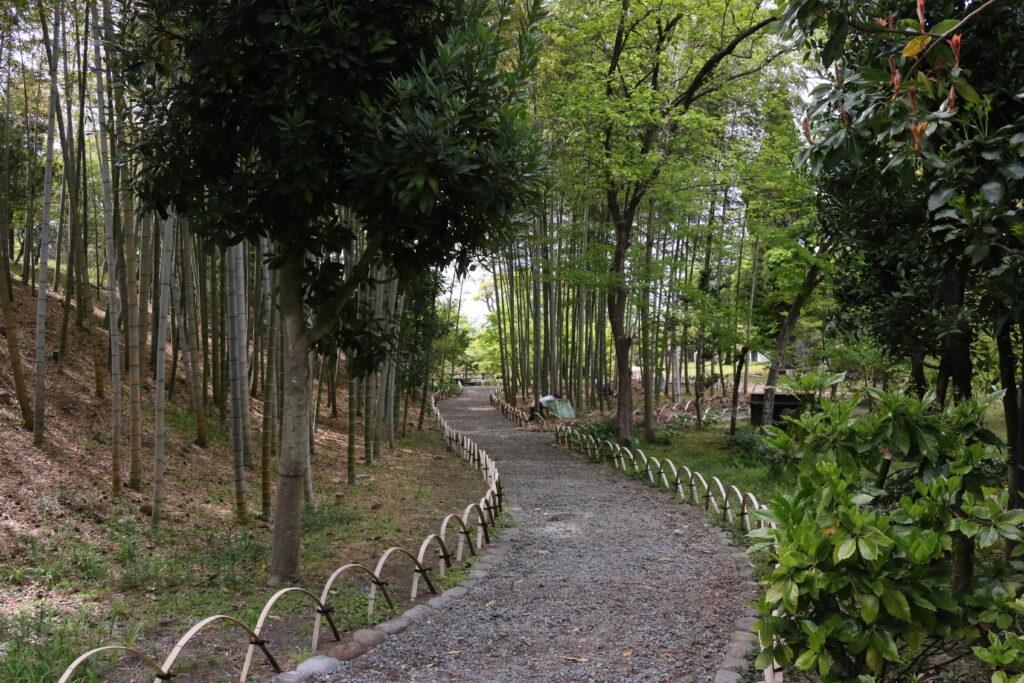 旧吉田茂邸竹林